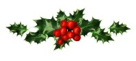 3542854-clipping-path-branch-of-holly-design-element-isolated-on-white-background